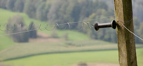 electric fence type