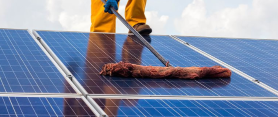 cleaning solar panel surface